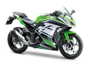 Ninja 300 30th Anniversary Edition