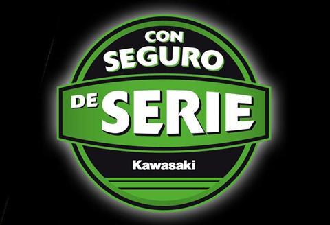 CON SEGURO DE SERIE