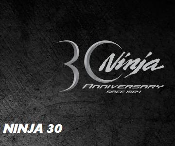 Sito dedicato alla mitica Ninja!