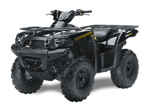 Brute Force 650 4x4i - (FRANCE only) 2014