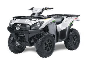 Brute Force 750 4x4i EPS 2019