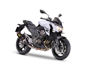 Z800e Performance (Spanish) 2013