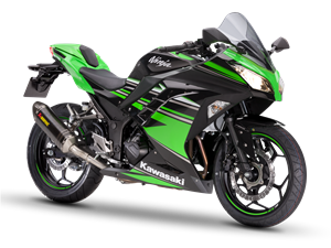 Ninja 300 KRT Edition Performance 2016