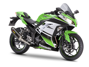 Ninja 300 30th Anniversary Performance 2015