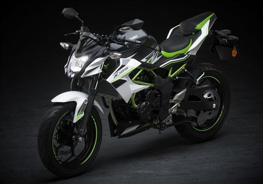 Z125 Performance My 2019 Kawasaki Europe