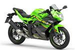 Ninja Supersport Styling