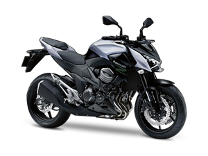 Z800 e version (GERMAN ONLY) 2014
